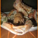 insalata-calamari-scampi-02